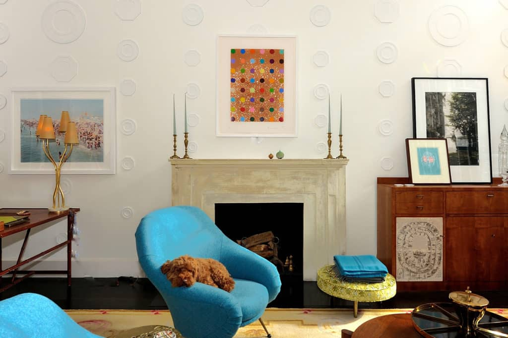 Michael Haverland dog on blue chair in living room
