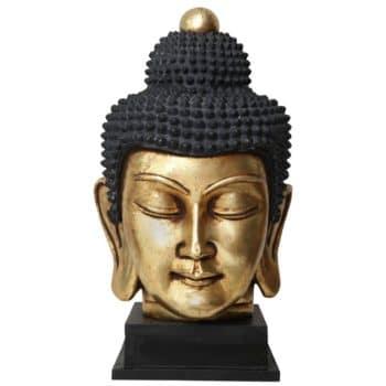 Thai Budda head