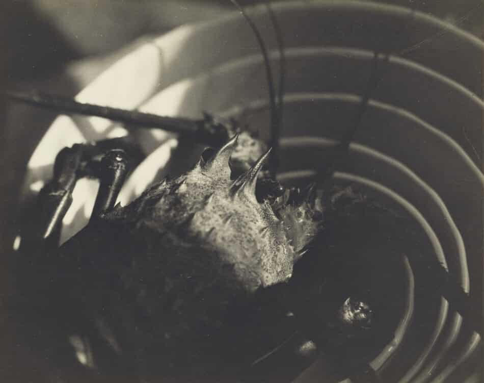 Untitled, 1925, by Shigemi Uyeda