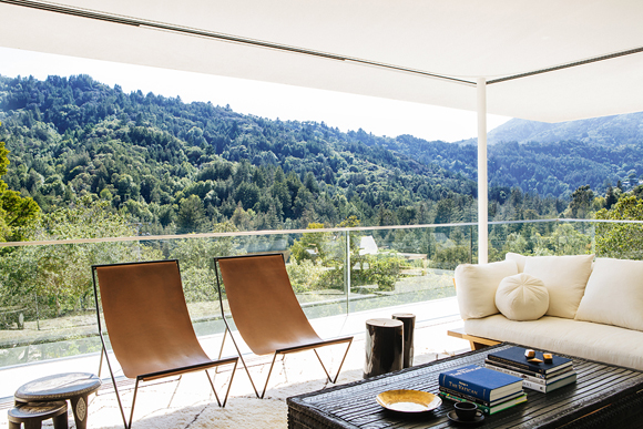 contemporary-minimalist-living-room-larkspur-ca-by-nicolehollis1
