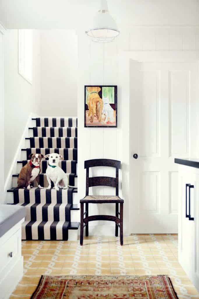 dogs on striped stairway by Burnham Design